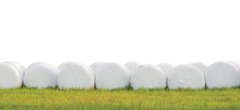 Os pacotes empilhados envolvidos da ensilagem enfileiram, isolado em volta dos rolos brancos do feno do filme plástico, panorama  Foto de Stock
