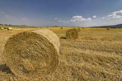 Os pacotes grandes fazem feno no campo após a colheita Foto de Stock