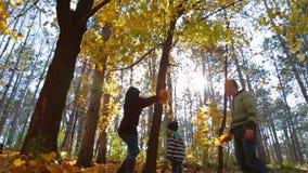 Os pais regam a criança com as folhas Movimento lento vídeos de arquivo