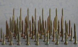 Os parafusos de madeira lisos da fixação alinharam em tamanho a foto conservada em estoque Foto de Stock Royalty Free