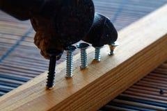 Os parafusos dispersados parafusaram na prancha de madeira e no martelo pequeno Imagens de Stock Royalty Free