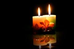 Os pares candle com frangipane Fotografia de Stock Royalty Free