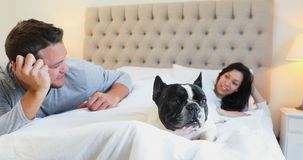 Os pares com pug perseguem a interação um com o otro na cama 4k filme