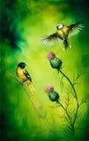 Os pares de aves canoras que lisonjeiam acima de um distel florescem, em um fundo do verde esmeralda Imagens de Stock Royalty Free