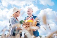 Os pares de esposa e de marido de irradiação vão cultivar no dia de verão morno agradável imagem de stock