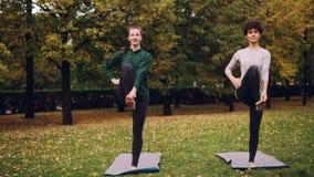 Os pares de meninas estão fazendo a ioga no parque que pratica equilibrando os exercícios que estão em um pé durante a ioga indiv vídeos de arquivo