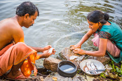 Os pares indianos limpam peixes no rio Foto de Stock
