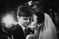 Os pares novos bonitos do casamento branco preto da fotografia estão na floresta do fundo Fotos de Stock