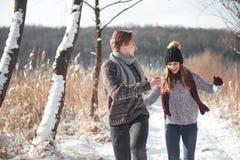 Os pares novos felizes no inverno estacionam ter o divertimento Família ao ar livre imagem de stock