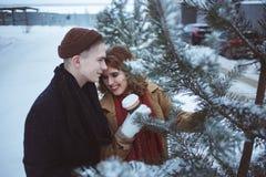 Os pares novos que abraçam entre árvores cobriram a neve Atividade de lazer no parque Copos de café nas mãos Fotografia de Stock Royalty Free