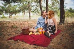 Os pares têm um piquenique na manta vermelha com frutos diferentes Imagens de Stock