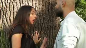 Os pares tiveram um argumento perto da árvore vídeos de arquivo