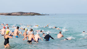 Os participantes do triathlon anual começam-me na nadada no Imagens de Stock Royalty Free