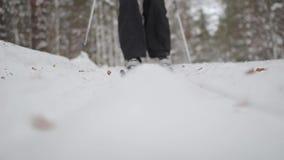 Os patins do esquiador nas madeiras Trilha do esqui vídeos de arquivo