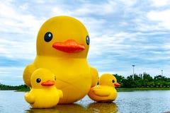 Os patos amarelos de flutuação da borracha balloon o flutuador no lago Nong Prajuk imagem de stock