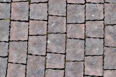 Os pavimentos, modelados pavimentando telhas, cimentam o fundo do assoalho do tijolo Fotos de Stock Royalty Free