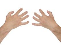 Os peitos das mulheres da posse das mãos dos homens no branco Imagens de Stock Royalty Free