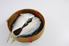 Os peixes curtos frescos da cavala (2) Foto de Stock Royalty Free