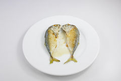 Os peixes curtos fritados da cavala (1) Imagens de Stock