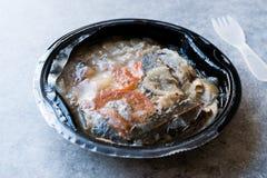 Os peixes do sargo da Porca-cabeça do marisco de Instand no recipiente plástico com forquilha/cozinharam o bouillabaisse imagem de stock royalty free