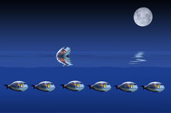 Os peixes e a lua Imagem de Stock