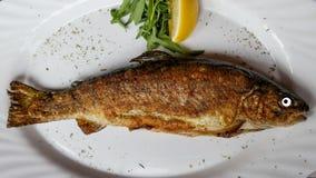 Os peixes fritados olham fixamente mim Foto de Stock Royalty Free