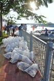 Os peixes são mantidos em uns sacos de plástico que preparam-se para ser liberado no rio de Saigon no dia nacional da pesca em Vi imagem de stock