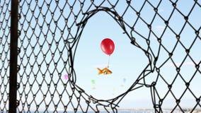 Os peixes voam no céu Fotografia de Stock Royalty Free