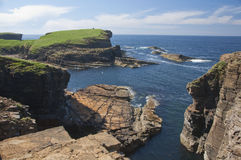 Os penhascos aproximam a cabeça de Marwick, consoles de Orkney Foto de Stock