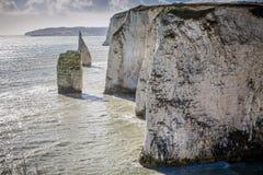 Os penhascos de giz litorais aproximam Harry Rocks idoso, Swanage, Dorset, Reino Unido fotografia de stock