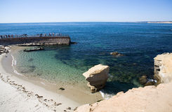 Os penhascos de La Jolla selam a praia Fotos de Stock Royalty Free