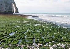 Os penhascos em Etretat em Normandy, France Fotografia de Stock