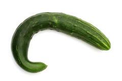 Os pepinos curvados são tão saborosos quanto certo Imagens de Stock Royalty Free