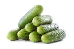 Os pepinos verdes isolados no fundo branco Imagem de Stock