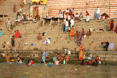 Os peregrinos hindu tomam o banho e rezar-lo na Índia Fotografia de Stock Royalty Free