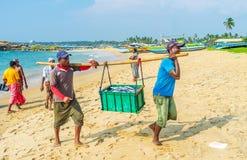 Os pescadores com caixa pesada imagem de stock