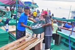 Os pescadores estão aterrando o atum dos barcos de pesca ao mercado Imagem de Stock Royalty Free