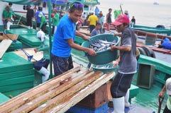 Os pescadores estão aterrando o atum dos barcos de pesca ao mercado Foto de Stock