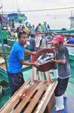 Os pescadores estão aterrando o atum dos barcos de pesca ao mercado Imagem de Stock