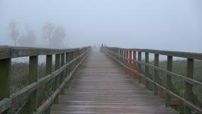 Os pescadores mostram em silhueta e cantam na manhã enevoada na ponte de madeira do lago vídeos de arquivo
