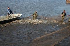 Os pescadores puxam dentro as redes enchidas com os peixes Fotos de Stock Royalty Free