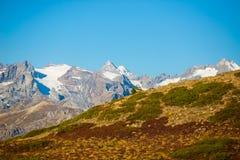 Os picos majestosos do DES Ecrins do maciço parque nacional de 4101 m com as geleiras, em França Opinião do Telephoto de distante foto de stock