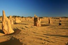 Os pináculos abandonam, Austrália Ocidental foto de stock royalty free