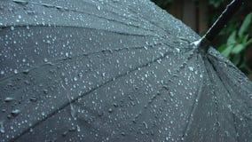 Os pingos de chuva fluem abaixo do guarda-chuva vídeos de arquivo