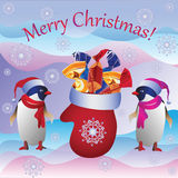 Os pinguins e o mitene do Natal Fotografia de Stock Royalty Free