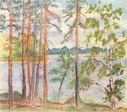 Os pinhos aproximam o lago ilustração royalty free