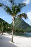 Os Pitons, St Lucia Imagem de Stock
