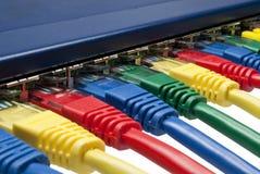 Os plugues coloridos da rede conectaram ao router/interruptor Foto de Stock