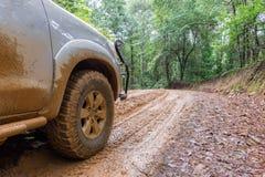 Os pneus de carro na estrada de terra em um campo ajardinam imagens de stock royalty free