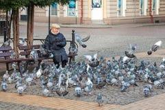 Os pombos de alimentação da mulher em Liberty Square localizaram na lareira da cidade Imagem de Stock